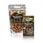 Raw Chocolate Company Raw Chocolate Mulberries