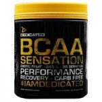 Dedicated BCAA Sensation – 30 Servings